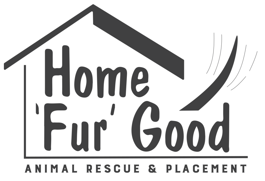 HomeForGood_Logo